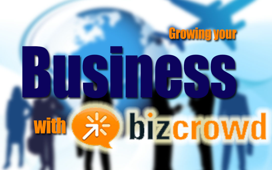 Growing your business with Bizcrowd